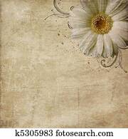 vintage shabby background with flowers
