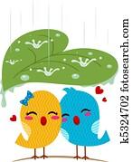 Lovebirds Sheltering From the Rain