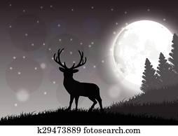 A deer standing