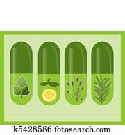 Vector Herbal Medicine