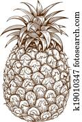 engraving pineapple on white back