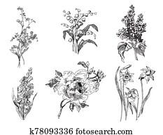hyacinth,, tulips,, lilie, von, dass, valley,, lilac,, peony,, vergessen, mir, not,, und, narzissen