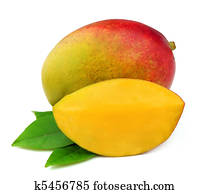 Mango fetus