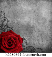 grunge texture with red Rose