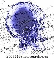 eeg brainwaves and x-ray skull