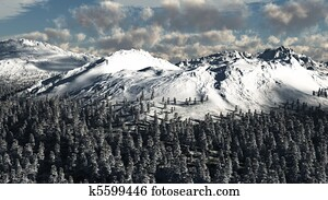Snowy Tree Covered Mountain Scenery