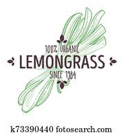 Herbal tea ingredient, lemongrass isolated icon with lettering