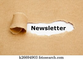 Newsletter Torn Paper Concept