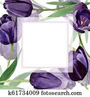 Watercolor black tulips flower. Floral botanical flower. Frame border ornament square.