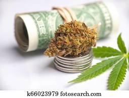 cannabis, nug, und, blatt, mit, gerollt, amerikanische dollar