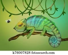 illustration of chameleon and flies