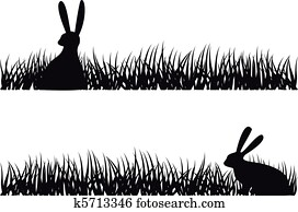 rabbit in grass, vector