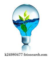 images plante int rieur ampoule k1528158 recherchez des photos des images des. Black Bedroom Furniture Sets. Home Design Ideas