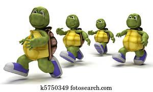 Tortoises running in sneakers