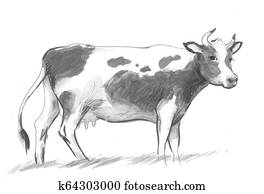 Standing cow