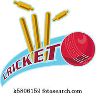cricket ball bowling wicket