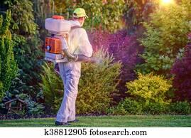 Pest Control Garden Spraying