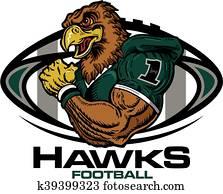 hawks football