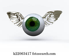 eye with wings that fly