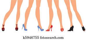 female legs in designer shoes
