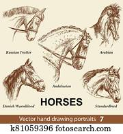 Set of hand drawing horses 7