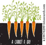 Growing Carrots Scratchy Drawing and Lettering