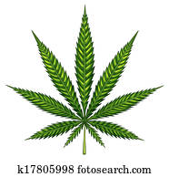 Marijuana Leaf Isolated