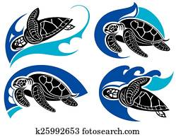 Sea turtle .Summer symbols