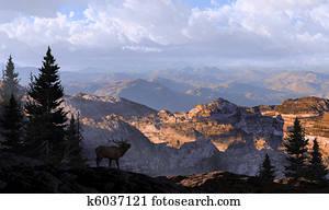 Elk Lookout Silhouette