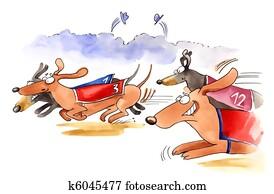 dachshund dogs race