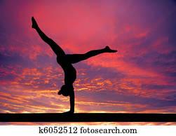 Gymnastics sky