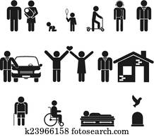 Life stage. Birth and adolescence, youth , adulthood, old age, death