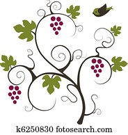 Grape vine and bird.
