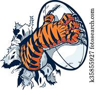 tigerpfote, packend, rugby ball
