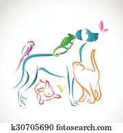 Vector group of pets - Dog, cat, parrot, chameleon, rabbit, butterfly, dragonfly isolated on white background