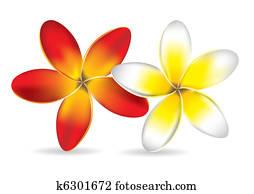 Yellow flower clip art illustrations 62455 yellow flower clipart beautiful frangipani flowers mightylinksfo