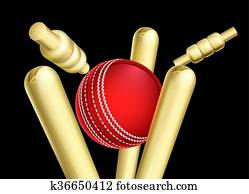 Cricket Ball Breaking Wicket Stumps