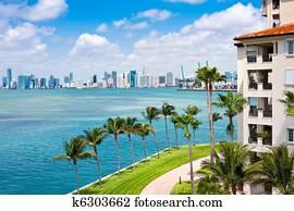 Miami Tropical Paradise