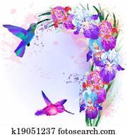 vektor, karte, mit, iris, blumen, und, kolibri