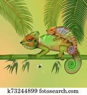 illustration of chameleons