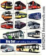 Big set of city buses. Coach. Vect