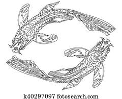 Clip Art Tukan Ausmalbilder Für Erwachsene Vektor K36138216