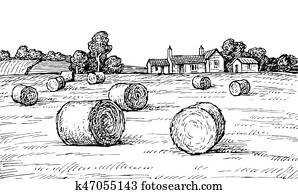 feld, mit, haystacks.