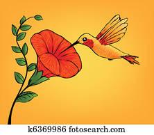 kolibri, und, blume