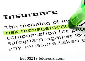 'Risk management' highlighted, under 'Insurance'