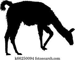Llama silhouette