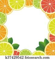 White Centre Citrus Fruits