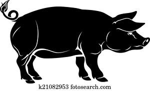 schwein, abbildung