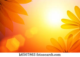 Sunshine background with sunflower details.