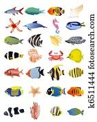 Clipart marino pesci e animali collezione k3419924 - Clip art animali marini ...